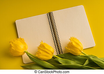 Yellow fresh tulips and notepad on yellow top view