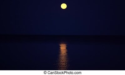 Yellow full moon hangs on a calm sea. Seagulls fly one after another over the sea next to the camera.