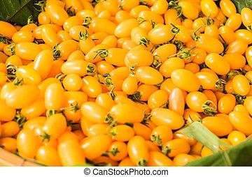 Yellow Grape Tomatoes, Fresh cherry baby tomatoes
