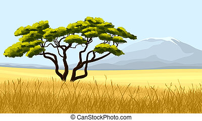 Yellow grass and African acacia. - Vector illustration:...