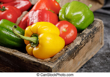 Yellow, green and red bell peppers.