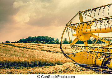 Yellow harvester on the country