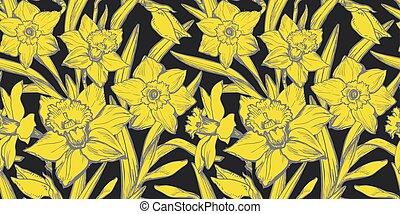 Yellow Illuminating Daffodils Hand Drawn Close-up on black background.