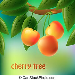 Yellow, juicy, sweet cherries on a branch for your design. Vector