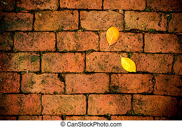 Yellow leaf fall on red brick floor