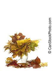 yellow leaves in vase