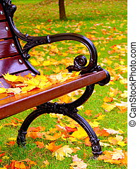 Yellow leaves lie on bench in park in autumn