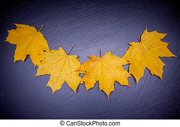 yellow leaves on stone background