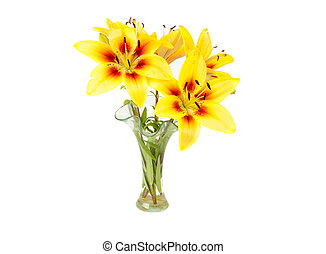 yellow lily in a vase