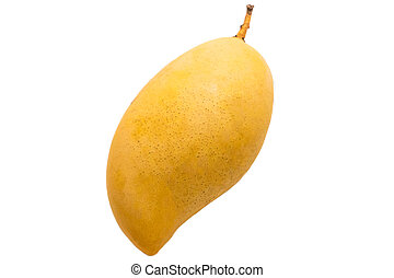 Yellow mango fruit on a white background