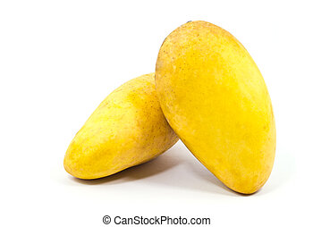 Yellow mango isolated