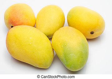 yellow Mangos - Five mangos on white background
