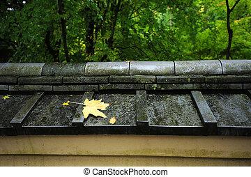 leaf on japanese style roof