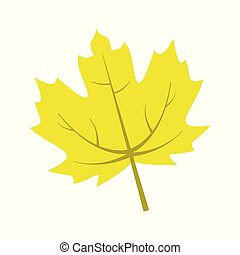 Yellow Maple Leaf Vector Illustration Graphic
