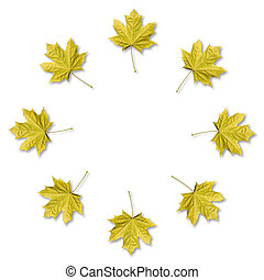 Maple leaves organized in round frame with copy space. Fall background.