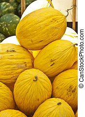 yellow melons for sale