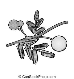 Yellow mimosa flower icon in monochrome style isolated on white background. Australia symbol stock bitmap,raster illustration.