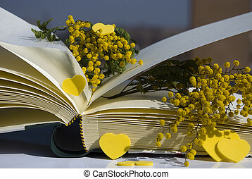 8th march - Yellow mimosa on book for 8th march...