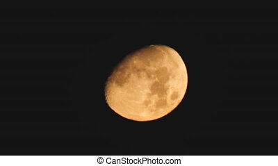Yellow Moon moves in the Black Sky at Night. Timelapse.