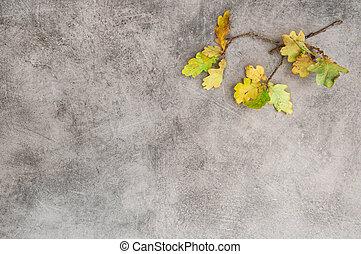 Yellow oak leaves stone texture. Autumn background