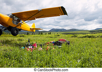 Yellow piper cub bush plane taking off