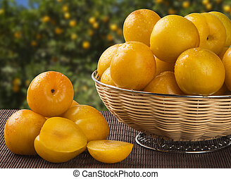 yellow plums with leaves in a straw basket on old wooden and plantation background