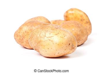 Yellow potato group