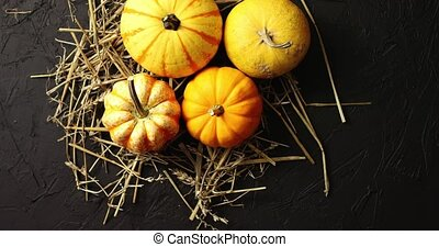 Yellow pumpkins laid on hay - From above view of ripe...