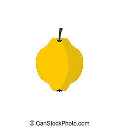 Yellow quince fruit icon, flat style
