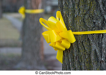 Yellow Ribbon Around An Old Oak Tree 2 - Closeup of a yellow...