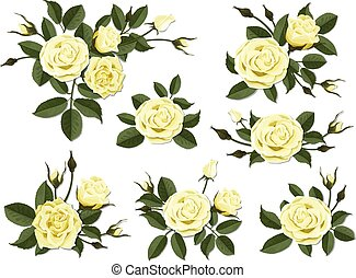 Yellow rose boutonniere set - Yellow rose boutonniere. Set...