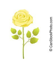 Yellow Rose Flower with Green Leaves on Long Stem - Yellow...