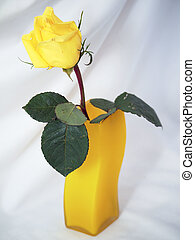 Yellow rose in a vase