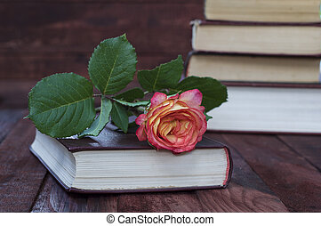 Yellow rose lays on the book