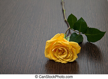 Yellow rose on a wooden table