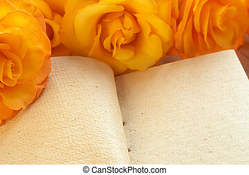 Yellow roses on a book