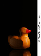 Yellow rubber duck with his reflection in glass, black background
