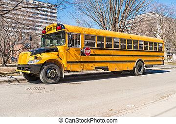 Yellow school bus in America