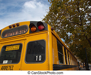 Yellow School Bus - Yellow school bus with lettering in...