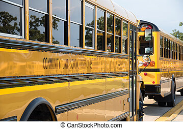 yellow school buses along curb