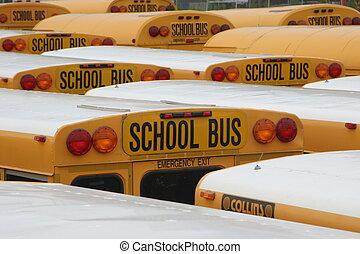 Yellow Schoolbus - American schoolbus parking lot