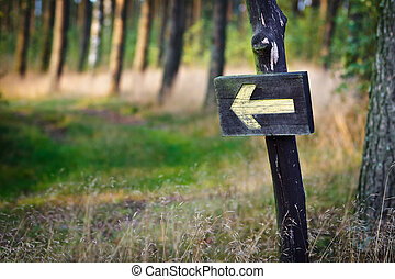 Yellow sign in the forest