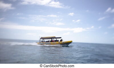 Yellow speedboat on the loose - A long shot of a yellow...