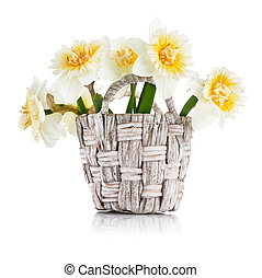 Yellow spring flowers in wicker basket