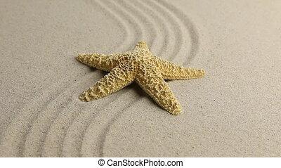 Yellow starfish lying on the undulating sand beach. HD