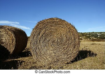 Yellow straw round bale in the fields, Spain