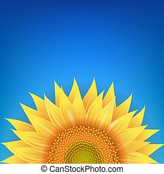 Yellow Sunflowers Flower With Blue Background