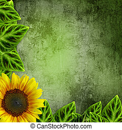 yellow sunflowers on green