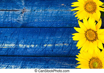 Yellow sunflowers painted fence