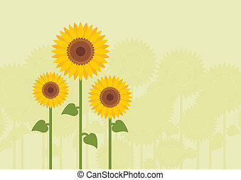 Yellow sunflowers vector background